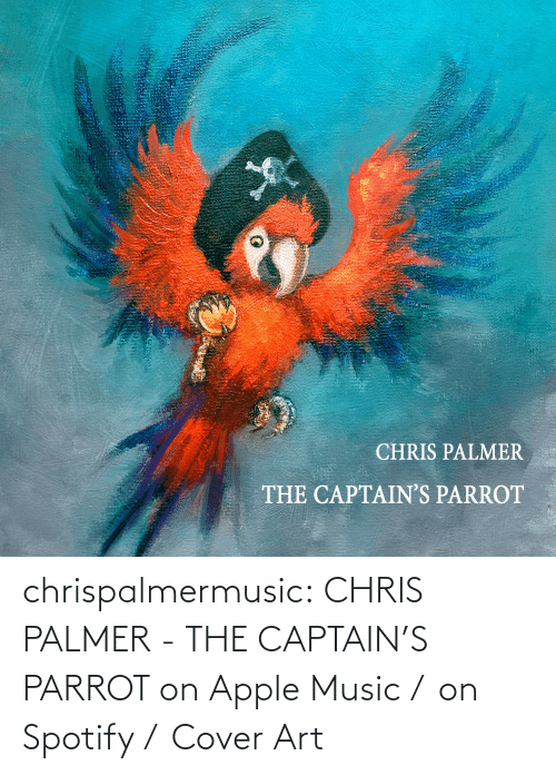 art: chrispalmermusic:  CHRIS PALMER - THE CAPTAIN'S PARROT on Apple Music /  on Spotify /  Cover Art