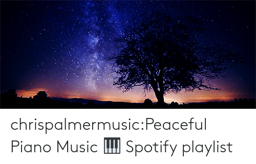 Piano: chrispalmermusic:Peaceful Piano Music 🎹 Spotify playlist