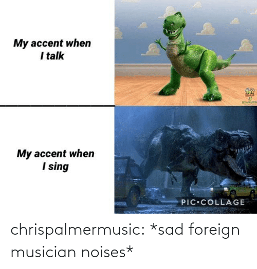 Blog: chrispalmermusic:  *sad foreign musician noises*