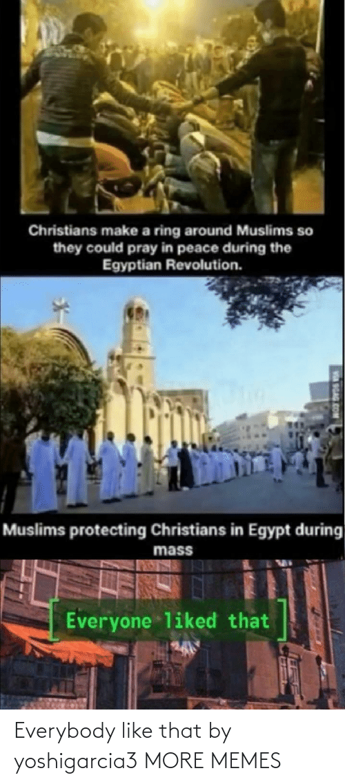 pray: Christians make a ring around Muslims so  they could pray in peace during the  Egyptian Revolution.  Muslims protecting Christians in Egypt during  mass  Everyone liked that  SGAG Everybody like that by yoshigarcia3 MORE MEMES