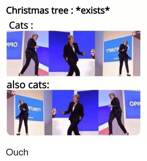 Cats, Christmas, and Christmas Tree: Christmas tree: *exists*  Cats:  190  also cats:  OP  RTUNITY