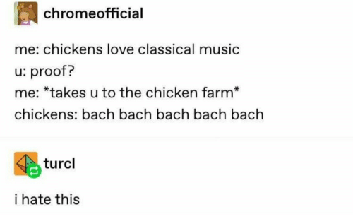 Love, Music, and Chicken: chromeofficial  me: chickens love classical music  u: proof?  me: *takes u to the chicken farm*  chickens: bach bach bach bach bach  turcl  i hate this