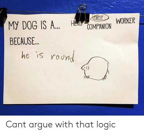 Arguing, Logic, and Dog: CIRCLE  MY DOG IS ... HCOMPANION  WORKER  BECAUSE...  he is round Cant argue with that logic