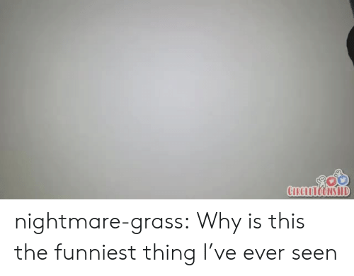 Tumblr, Blog, and Com: CIRCLTONS HD nightmare-grass: Why is this the funniest thing I've ever seen