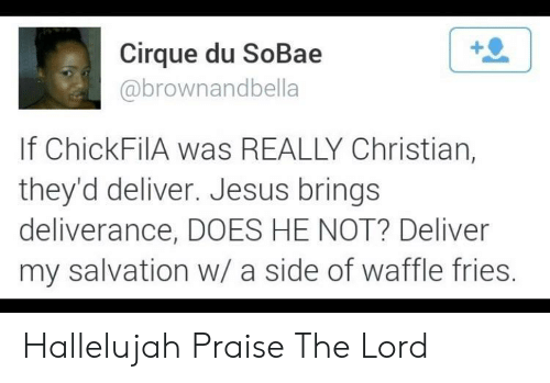 praise the lord: Cirque du SoBae  abrownandbella  If ChickFilA was REALLY Christian,  they'd deliver. Jesus brings  deliverance, DOES HE NOT? Deliver  my salvation w/ a side of waffle fries Hallelujah Praise The Lord