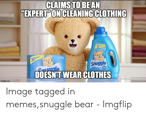 Snuggle Bear Meme: CLAIMS  TO BEAN  EXPERT'ON CLEANING CLOTHING  30  Snuggle  C uale  DOESNT WEAR CLOTHES Image tagged in memes,snuggle bear - Imgflip