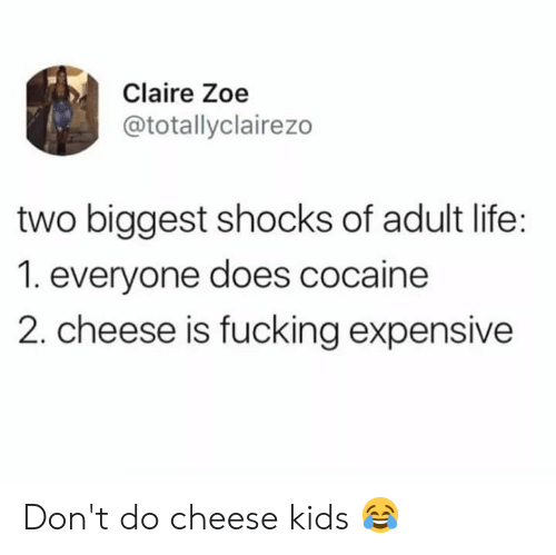 Adult Life: Claire Zoe  @totallyclairezo  two biggest shocks of adult life:  1. everyone does cocaine  2. cheese is fucking expensive Don't do cheese kids 😂