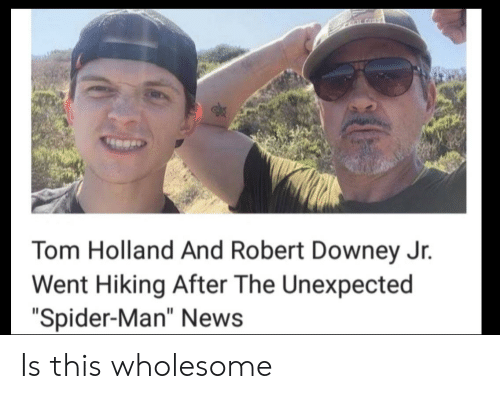 "Robert Downey Jr.: CLALGHT  Tom Holland And Robert Downey Jr.  Went Hiking After The Unexpected  ""Spider-Man"" News Is this wholesome"