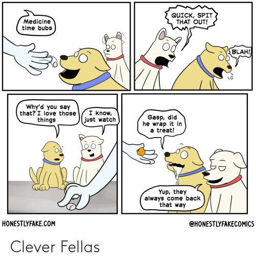 clever: Clever Fellas