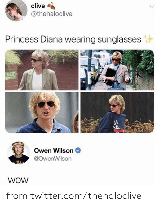 wearing sunglasses: clive  @thehaloclive  Princess Diana wearing sunglasses  EXIT  Owen Wilson  @OwenWilson  WOW from twitter.com/thehaloclive