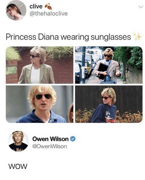 wearing sunglasses: clive  @thehaloclive  Princess Diana wearing sunglasses  Owen Wilson  @owenWilson  WOW