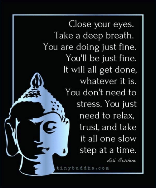 Takes A Deep Breath: Close your eyes.  Take a deep breath.  You are doing just fine.  You'll be just fine.  It will all get done,  whatever it is.  You don't need to  stress. You just  need to relax,  trust, and take  it all one slow  step at a time.  ori eschene  tinybuddha.com