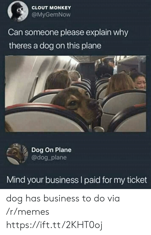Memes, Business, and Monkey: CLOUT MONKEY  @MyGemNow  Can someone please explain why  theres a dog on this plane  Dog On Plane  @dog plane  Mind your business I paid for my ticket dog has business to do via /r/memes https://ift.tt/2KHT0oj