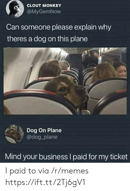 Monkey: CLOUT MONKEY  @MyGemNow  Can someone please explain why  theres a dog on this plane  Dog On Plane  @dog_plane  Mind your business I paid for my ticket I paid to via /r/memes https://ift.tt/2Tj6gV1