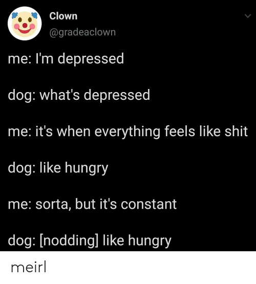 clown: Clown  @gradeaclown  me: I'm depressed  dog: what's depressed  he: it's when everything feels like shit  dog: like hungry  me: sorta, but it's constant  dog: [nodding] like hungry meirl