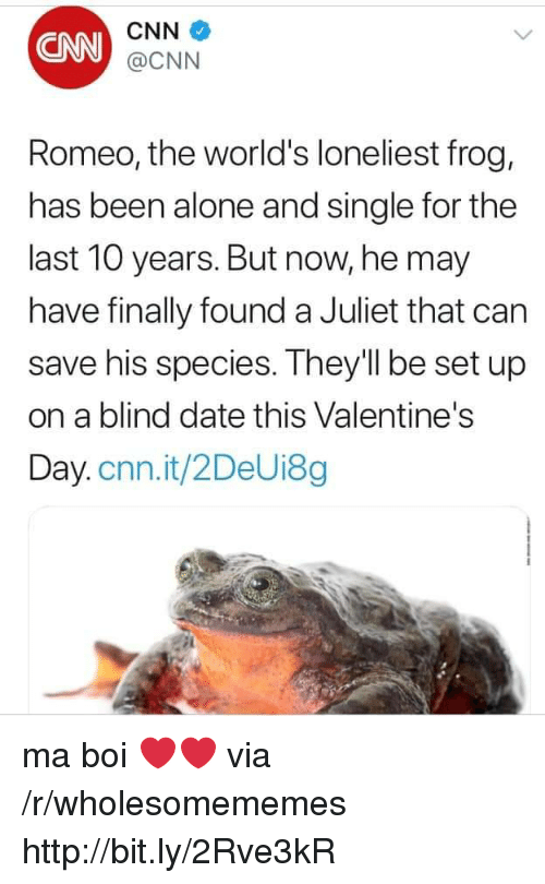 Being Alone, cnn.com, and Valentine's Day: CNN  CNN  @CNN  Romeo, the world's loneliest frog,  has been alone and single for the  last 10 years. But now, he may  have finally found a Juliet that can  save his species. They'll be set up  on a blind date this Valentine's  Day.cnn.it/2DeUi8g ma boi ❤️❤️ via /r/wholesomememes http://bit.ly/2Rve3kR