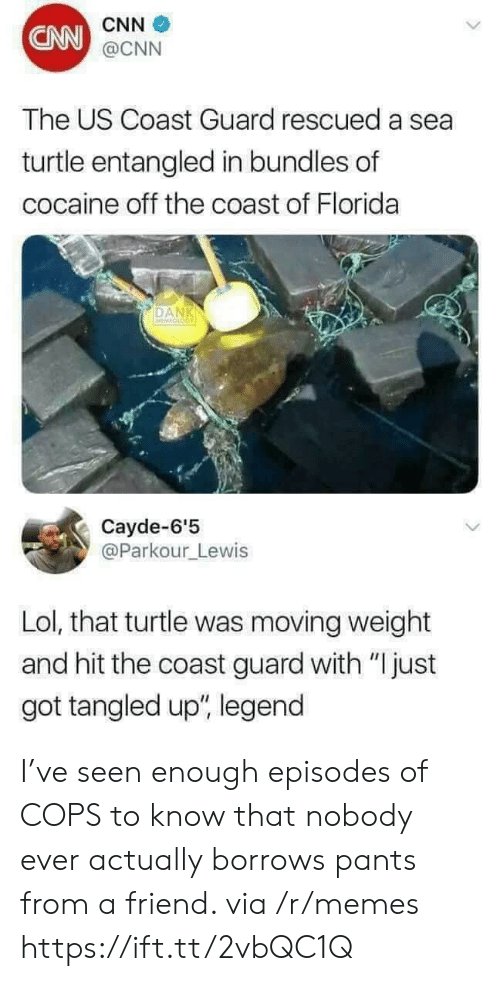"cnn.com, Lol, and Memes: CNN  CNN  @CNN  The US Coast Guard rescued a sea  turtle entangled in bundles of  cocaine off the coast of Florida  DAN  Cayde-6'5  @Parkour_Lewis  Lol, that turtle was moving weight  and hit the coast guard with ""Ijust  got tangled up"", legend I've seen enough episodes of COPS to know that nobody ever actually borrows pants from a friend. via /r/memes https://ift.tt/2vbQC1Q"