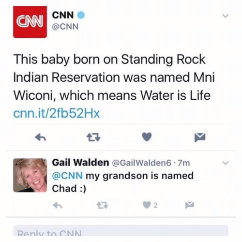 Standing: CNN  CNN  @CNN  This baby born on Standing Rock  Indian Reservation was named Mni  Wiconi, which means Water is Life  cnn.it/2fb52Hx  17  Gail Walden @GailWalden6 7m  @CNN my grandson is named  Chad :  2  Renly to CN