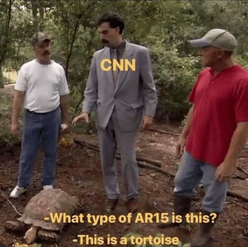 This Is A: CNN  -What type of AR15 is this?  -This is a tortoise