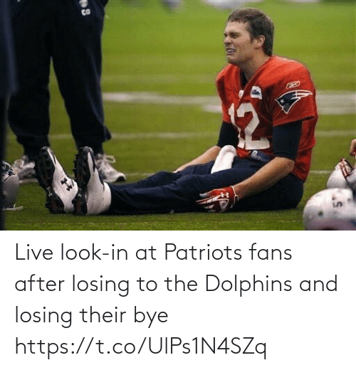 bye: CO Live look-in at Patriots fans after losing to the Dolphins and losing their bye https://t.co/UlPs1N4SZq