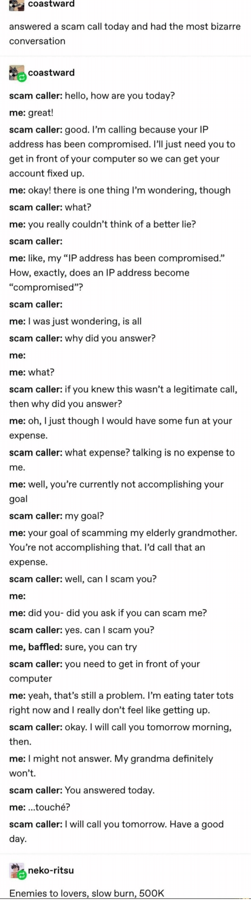 "Bizarre: coastward  answered a scam call today and had the most bizarre  conversation  coastward  scam caller: hello, how are you today?  me: great!  scam caller: good. I'm calling because your IP  address has been compromised. I'll just need you to  get in front of your computer so we can get your  account fixed up  me: okay! there is one thing I'm wondering, though  scam caller: what?  me: you really couldn't think of a better lie?  scam caller:  me: like, my ""IP address has been compromised.""  How, exactly, does an IP address become  ""compromised""?  scam caller:  me: I was just wondering, is all  scam caller: why did you answer?  me:  me: what?  scam caller: if you knew this wasn't a legitimate call,  then why did you answer?  me: oh, I just though I would have some fun at your  expense  scam caller: what expense? talking is no expense to  me.  me: well, you're currently not accomplishing your  goal  scam caller: my goal?  me: your goal of scamming my elderly grandmother.  You're not accomplishing that. Il'd call that an  expense  scam caller: well, can I scam you?  me:  me: did you- did you ask if you can scam me?  scam caller: yes. can I scam you?  me, baffled: sure, you can try  scam caller: you need to get in front of your  computer  me: yeah, that's still a problem. I'm eating tater tots  right now andI really don't feel like getting up  scam caller: okay. I will call you tomorrow morning,  then  me: I might not answer. My grandma definitely  won't.  scam caller: You answered today.  me: .touché?  scam caller: I will call you tomorrow. Have a good  day.  neko-ritsu  Enemies to lovers, slow burn, 500K"