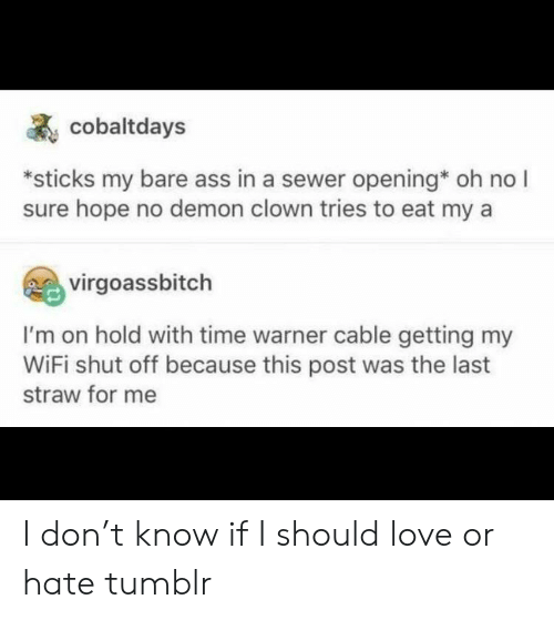 Ass, Love, and Tumblr: cobaltdays  sticks my bare ass in a sewer opening oh no I  sure hope no demon clown tries to eat my a  virgoassbitch  I'm on hold with time warner cable getting my  WiFi shut off because this post was the last  straw for me I don't know if I should love or hate tumblr
