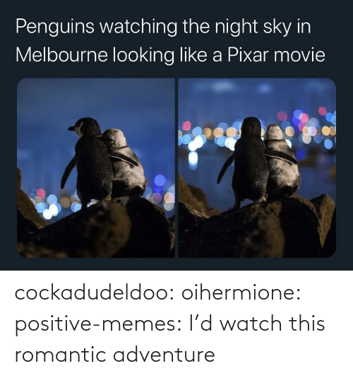 romantic: cockadudeldoo: oihermione:   positive-memes: I'd watch this romantic adventure
