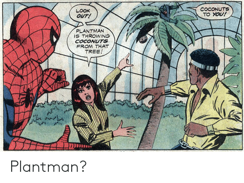 Tree, You, and Look: COCONUTS  TO YOU!  LOOK  OUT!  PLANTMAN  IS THROWING  COCONUTS  FROM THAT  TREE! Plantman?
