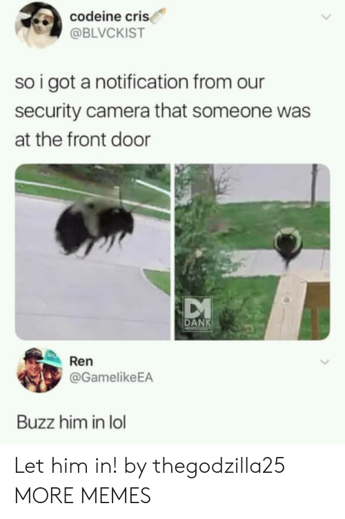 Cri: codeine cri  @BLVCKIST  so i got a notification from our  security camera that someone was  at the front door  DANK  Ren  @GamelikeEA  Buzz him in lol Let him in! by thegodzilla25 MORE MEMES