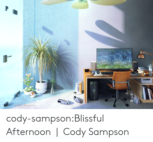 blissful: cody-sampson:Blissful Afternoon   Cody Sampson