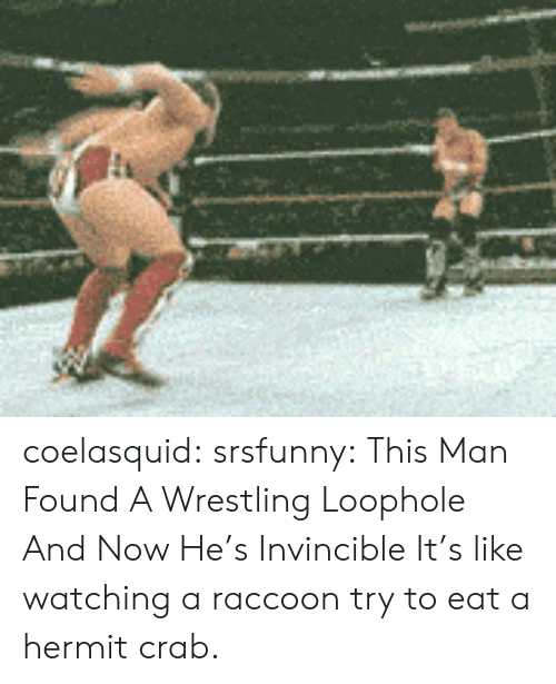 Target, Tumblr, and Wrestling: coelasquid:  srsfunny:  This Man Found A Wrestling Loophole And Now He's Invincible  It's like watching a raccoon try to eat a hermit crab.
