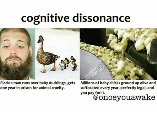 Alive, Animals, and Florida Man: cognitive dissonance  Florida man runs over baby ducklings, gets  Millions of baby chicks ground up alive and  one year in prison for animal cruelty.  suffocated every year, perfectly legal, and  you pay for it.  wake