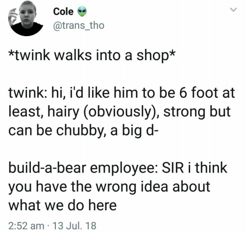 Build a Bear: Cole >  @trans_tho  *twink walks into a shop*  twink: hi, i'd like him to be 6 foot at  least, hairy (obviously), strong but  can be chubby, a big d-  build-a-bear employee: SIR i think  you have the wrong idea about  what we do here  2:52 am 13 Jul. 18