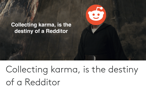 Collecting: Collecting karma, is the destiny of a Redditor