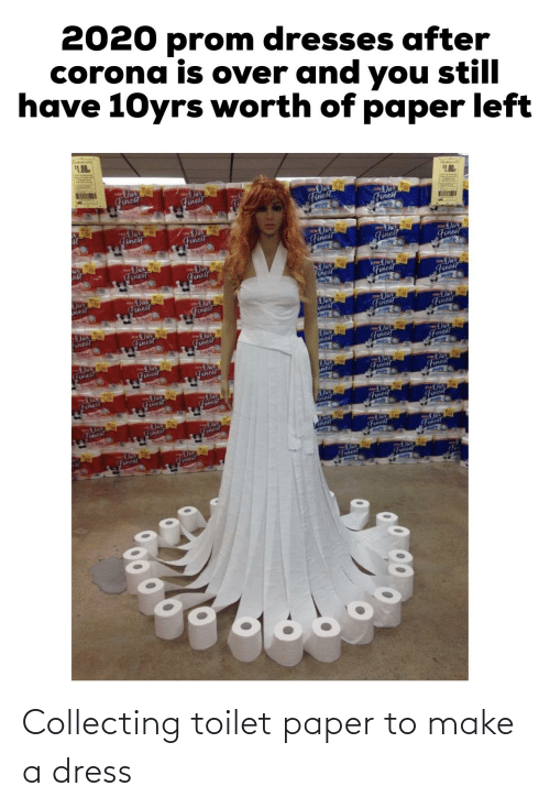 Collecting: Collecting toilet paper to make a dress