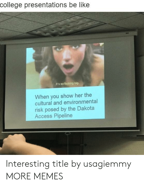 Dakota Access pipeline: college presentations be like  It's so fucking big.  When you show her the  cultural and environmental  risk posed by the Dakota  Access Pipeline Interesting title by usagiemmy MORE MEMES