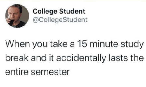 College Student: College Student  @CollegeStudent  When you take a 15 minute study  break and it accidentally lasts the  entire semester