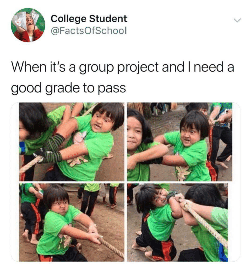 Good Grade: College Student  @FactsOfSchool  When it's a group project and I need a  good grade to pass