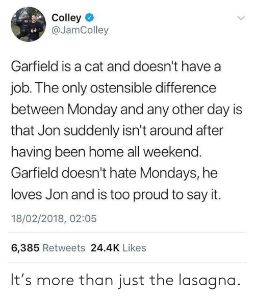 Mondays, Say It, and Home: Colley  @JamColley  ce  Garfield is a cat and doesn't have a  job. The only ostensible difference  between Monday and any other day is  that Jon suddenly isn't around after  having been home all weekend  Garfield doesn't hate Mondays, he  loves Jon and is too proud to say it.  18/02/2018, 02:05  6,385 Retweets 24.4K Likes It's more than just the lasagna.