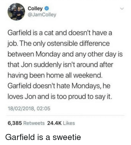 Mondays, Say It, and Home: Colley  @JamColley  Garfield is a cat and doesn't have a  job. The only ostensible difference  between Monday and any other day is  that Jon suddenly isn't around after  having been home all weekend  Garfield doesn't hate Mondays, he  loves Jon and is too proud to say it.  18/02/2018, 02:05  6,385 Retweets 24.4K Likes Garfield is a sweetie