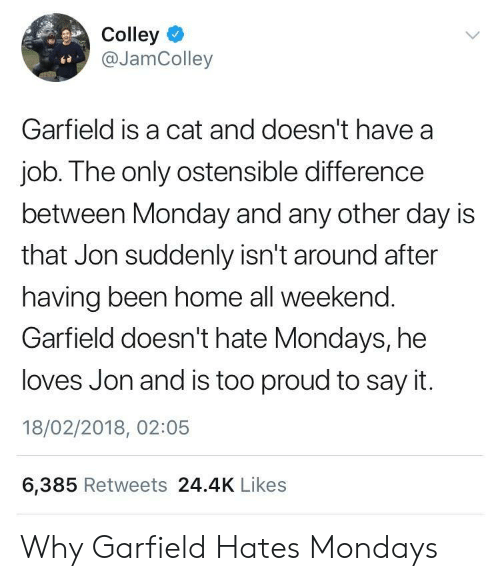 He Loves: Colley  @JamColley  Garfield is a cat and doesn't have a  job. The only ostensible difference  between Monday and any other day is  that Jon suddenly isn't around after  having been home all weekend.  Garfield doesn't hate Mondays, he  loves Jon and is too proud to say it.  18/02/2018, 02:05  6,385 Retweets 24.4K Likes Why Garfield Hates Mondays