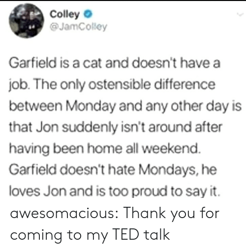 Mondays: Colley  @JamCosey  4.  Garfield is a cat and doesn't have a  job. The only ostensible difference  between Monday and any other day is  that Jon suddenly isn't around after  having been home all weekend  Garfield doesn't hate Mondays, he  loves Jon and is too proud to say it. awesomacious:  Thank you for coming to my TED talk