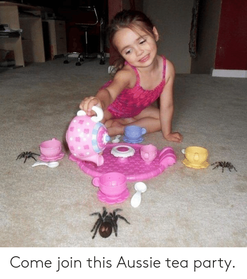 tea party: Come join this Aussie tea party.