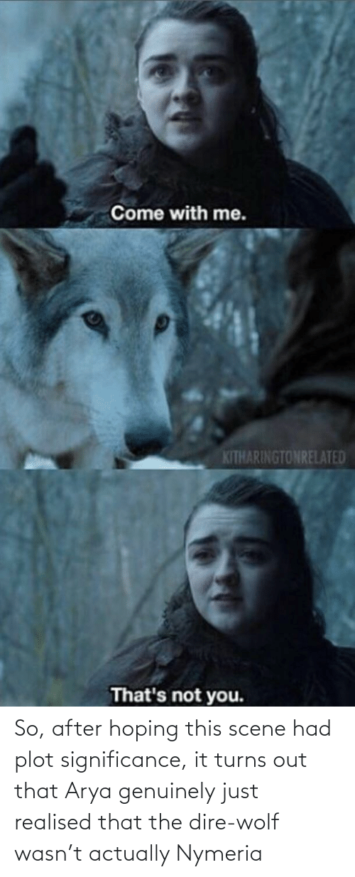 dire wolf: Come with me.  KITHARINGTONRELATED  That's not you. So, after hoping this scene had plot significance, it turns out that Arya genuinely just realised that the dire-wolf wasn't actually Nymeria