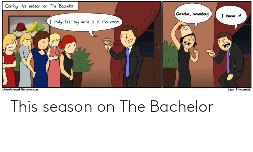 gotcha: Coming this season on The Bachelor  Gotcha, scumbag!  I knew it!  I truly feel my wife is in this room.  Sean Fitzpatrick  chocolatewafflescomic.com This season on The Bachelor