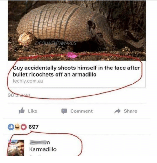 armadillo: @COMMENTAWARD  uy accidentally shoots himself in the face after  bullet ricochets off an armadillo  techly.com.au  Like  Comment  Share  697  Karmadillo