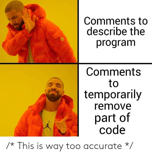 Describe: Comments to  describe the  program  Comments  to  temporarily  remove  part of  code /* This is way too accurate */