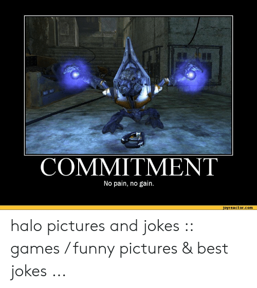 Funny, Halo, and Best: COMMITMENT  No pain, no gain.  joyreactor.com halo pictures and jokes :: games / funny pictures & best jokes ...