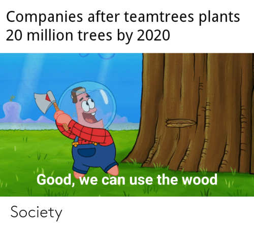 society: Companies after teamtrees plants  20 million trees by 2020  Good, we can use the wood Society