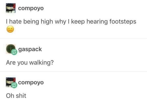 Shit, Why, and You: compoyo  I hate being high why I keep hearing footsteps  gaspack  Are you walking?  compoyo  Oh shit